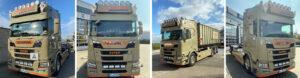 Müller Transporte und Containerdienst - Containerverleih